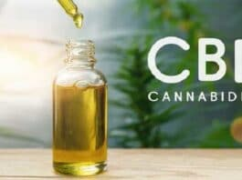 CBD Described Health Advantages Dosing & Possible Negative Effects